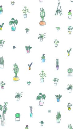 Cactus & Succulents wallpaper by Urban Jungle Bloggers for mobile & desktop