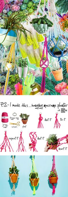 P.S.- I made this...Hanging Macrame Planter with @WoolandTheGang #PSIMADETHIS #DIY