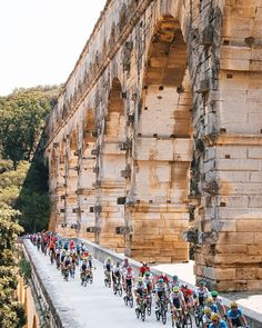TDF 2019 Stage 16 credit A.S.O. / Jered Gruber & Ashley Gruber Pro Cycling, Scenery, Racing, Tours, In This Moment, Landscape, Stage, Biking, Bicycle Kick
