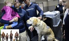 Oh the feels, Such a beautiful story. Sportsman who adopted dog in Ecuadorian jungle waits to be reunited
