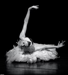 OKC ballet also did the dying swan. The Dance United tornado benefit was fab. It was so amazing to watch! So much talent. Ballet Photography, White Photography, Black Swan, Black And White, White Swan, La Bayadere, Russian Ballet, Ballet Dancers, Ballerinas