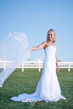 Wessel & Jorien Wedding Day, photo by: Wiaan Coffee Photography Coffee Photography, View Photos, Our Wedding, Wedding Dresses, Fashion, Moda, Bridal Dresses, Alon Livne Wedding Dresses, Fashion Styles
