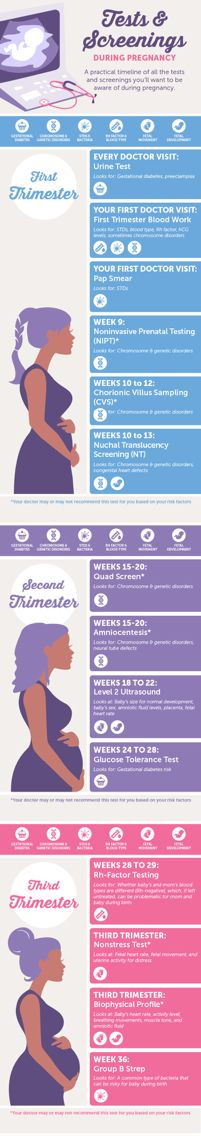Preparing for baby and pregnancy tips: Infographic: Pregnancy Tests & Screenings preparing for pregnancy prepar for pregnancy Pregnancy Labor, Pregnancy Health, Pregnancy Belly, Pregnancy Stages, Pregnancy Trimester Chart, Vegan Pregnancy, Pregnancy Timeline, Pregnancy Memes, Pregnancy Guide