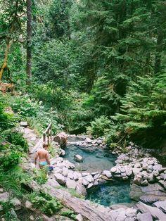 Cougar, Terwilliger Hot Springs