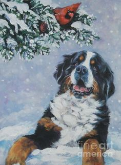 """Bernese Mountain Dog With Cardinal"" by L.A.Shepard"