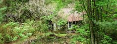 Lost Cove Ghost Town - Erwin TN