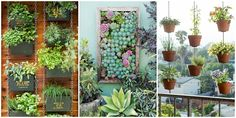 You can tend edibles, annuals, and even perennials with these vertical gardening ideas.