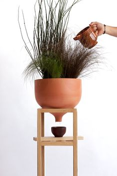 Ceramic funnel flower pot by Martin Azua