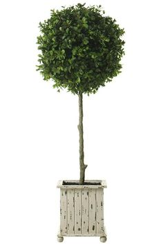 Boxwood Topiary - Topiaries - Artificial Topiary - Planters - Topiary Trees - Boxwood | HomeDecorators.com