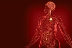 Stimulation of the nervous system could replace drugs for inflammatory and autoimmune conditions. Nursing Procedures, Cardiogenic Shock, Arterial Blood Gas, All Body Systems, Mental Confusion, Metabolic Acidosis, Heart Pump, Scientific American, Alternative Treatments