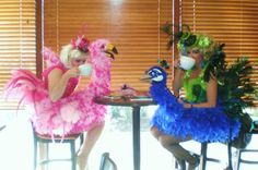 Together sipping coffee! Sit ting comfortably in our costumes! Birds of a Feather - Homemade costumes for women Halloween Costume Contest, Halloween Decorations, Halloween Party, Costume Ideas, Halloween 2016, Halloween Makeup, Halloween Ideas, Peacock Costume, Bird Costume