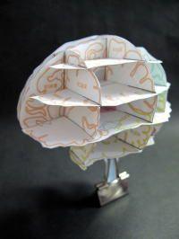 脳アトラス - brain atlas paper craft.  Lots of other paper crafts but in Japanese