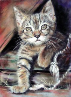 """PASTEL ON PAPER 7"""" X 5"""" Portrait of amazing photo If a copy would cheer up a wall then please take one ( the full sized image is watermark free ). Click here to visit my site-"""