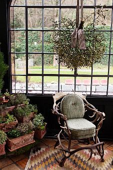 staghorn chair by the window...a vignette...