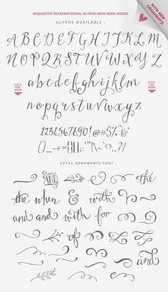 Stringfellows Typeface Font AlphabetGraffiti AlphabetEmbroidery FontsCalligraphy