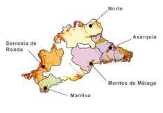 Malaga wine growing regions © DO Malaga.