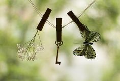 Found Things by {peace♥}, via Flickr
