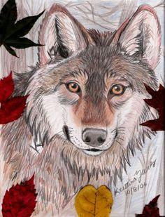 fall wolf by *NatsumeWolf on deviantART