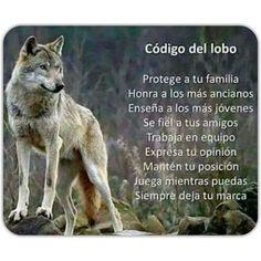 Código del lobo