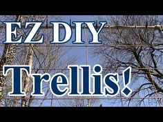 2 Min Tip: EZ DIY Trellis to Grow Tomatoes, Watermelon, Squash & Pumpkins Vertically - YouTube