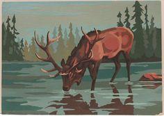 Elk paint by numbers