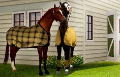 adoreible sims 3 horses | Sims 3 Horse Blankets Just In Time For Sims 3 Seasons!