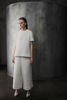 Co | Pre-Fall 2015 Collection | Style.com