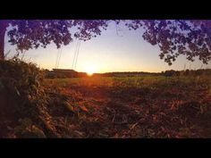 Syntheticsax - Goodbye Summer Full Hd Video, Saxophone, Country Roads, Summer, Summer Time, Saxophones