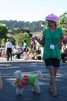 Winners of the costume contest for small poodles at Poodle Day 2013 Carmel, CA