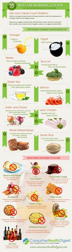 This infographic explains the top 10 fat burning foods...