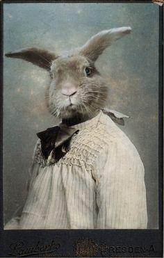 bunny artist self-portrait