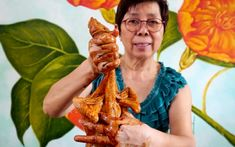 Lady holding up marinate chicken with wings folded backwards Cantonese Chicken Recipe, Soya Sauce Chicken, Chicken Sauce Recipes, Tofu Recipes, Fresh Chicken, Chicken Runs, Stuffed Whole Chicken, Soya Sauce Recipe, Soy Sauce