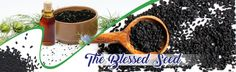 Balding Remedies The Blessed Seed - Nigella Sativa: Dosage Requirements for Black Cumin and Black Seed Oil Hair Remedies For Growth, Hair Loss Remedies, Hair Growth, Nigella Sativa Oil, Losing Hair Women, Hair Loss Medication, Black Seed, Natural Hair Care