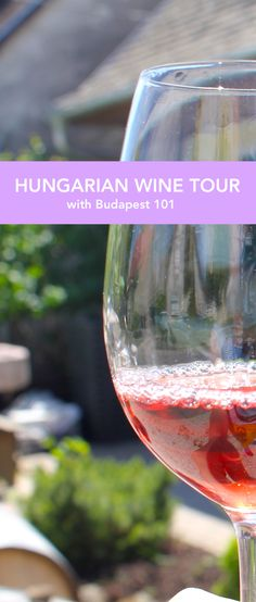Discover the amazing world of Hungarian wines on a Wine Tour with Budapest 101! We'll help you choose from the many wonderful regions the one that suits your taste the most.