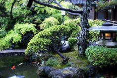 Kamishichi-ken,   (北野 上七軒 歌舞練場)Kyoto
