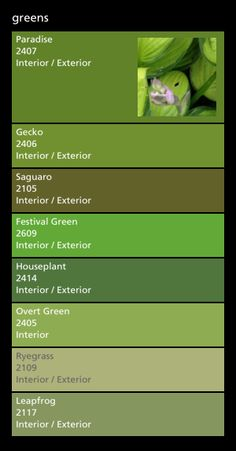 Kitchen colors - green