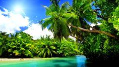 amazing beach under the palms wallpaper