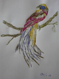ave del paraiso 2