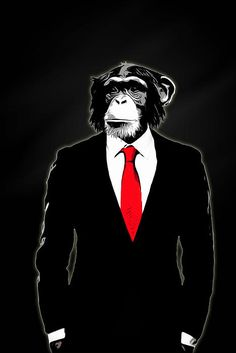 Cortesi Home is proud to present 'Domesticated Monkey' by Nicklas Gustafsson. Digital artwork featuring a monkey in a corporate business suit. Nicklas Gustafsson is a graphic designer and a photograph Monkey Art, Pet Monkey, Canvas Wall Art, Canvas Prints, Art Prints, Monkey Illustration, Animal Posters, Chimpanzee, Print Artist