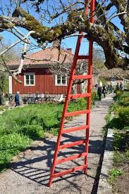 Relaterad bild Ladder, Outdoors, Gardening, Night, Stairway, Lawn And Garden, Outdoor Rooms, Off Grid, Ladders