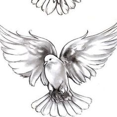 Dove tattoo designs are unisex and quite popular. Mainly because of the variety of meanings and other patterns that can be included in the dove tattoo. Dove Tattoo Meaning, Symbol Tattoos With Meaning, Symbolic Tattoos, Bird Drawings, Tattoo Drawings, Body Art Tattoos, Sleeve Tattoos, Dove Tattoo Design, Tattoo Designs