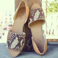 Milly with a touch of mayhem. These sultry serpent, flats are a definite stand out.