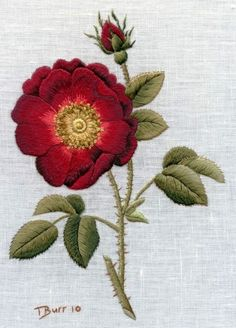 Needle Painting with Thread-French Rose by Trish Burr Embroidery Needles, Silk Ribbon Embroidery, Crewel Embroidery, Cross Stitch Embroidery, Embroidery Patterns, Machine Embroidery, Thread Painting, Needlepoint, Needlework