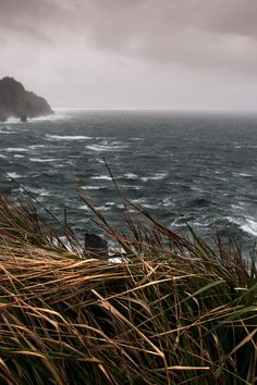 "decepticun: "" Oregon Coast | by Tim Rains Photography """
