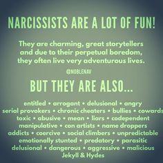 Empath 💕 Life After Abuse. what a fabulous description! Narcissistic People, Narcissistic Behavior, Narcissistic Abuse Recovery, Narcissistic Personality Disorder, Narcissistic Sociopath, Narcissistic Men Relationships, Narcissistic Sister, Sociopathic Behavior, Abusive Relationship