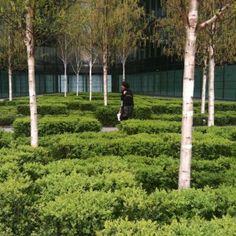 MoreLondon by Townshend Landscape Architects.