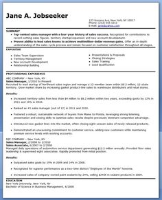 Sales Manager Resume Sample Channel Sales Resume Example  Resume Examples Job Description