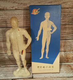 Hey, I found this really awesome Etsy listing at https://www.etsy.com/listing/246486210/vintage-acupuncture-man-model-of-the