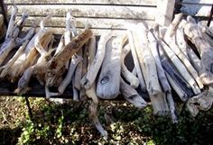 How To Treat Driftwood – Cleaning, Treatment and Finishing Driftwood