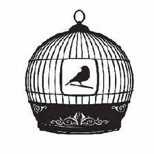 "Do You Feel ""Caged"" by Life? . . .finding out that the doors have been open all along may change your perspective."
